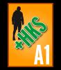 DIN-A2 Hochformat mit HKS-Farbe